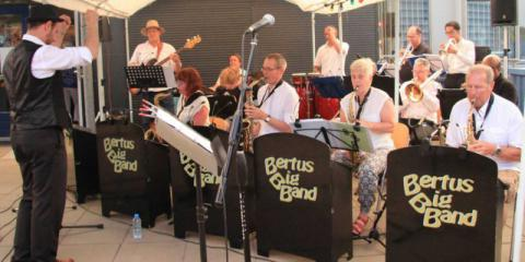 Bertus Big Band zoekt gitarist