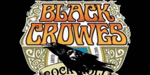 Black Crowes tribute zoekt toetsenist