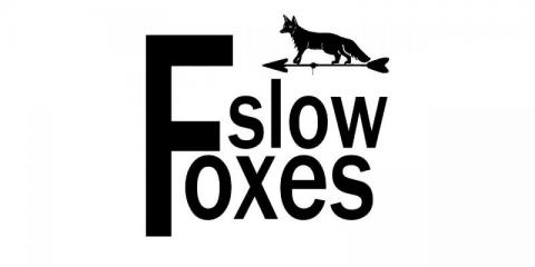 Slow Foxes zoekt bassist